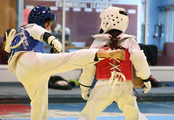 OLYMPIC SPARRING
